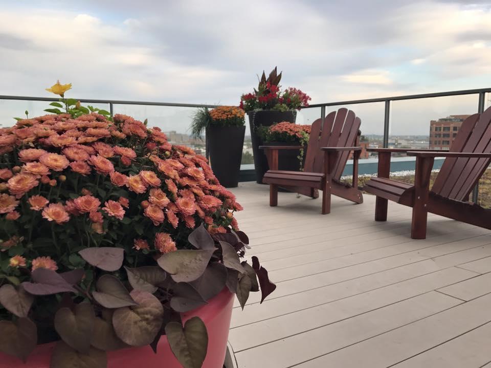 Aménagement De Balcons Et Terrasses Urbaines Montréal Rive